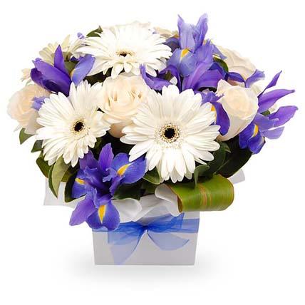 Blue & White Flowers Stunning Box: Send Gifts to Australia