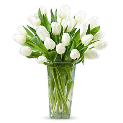 20 White Tulips: Wedding Gifts