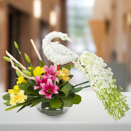Dazzling White Floral Peacock: Orchid Flowers