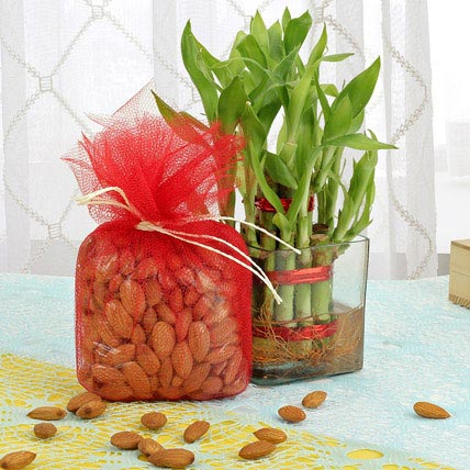 Luck N Health Combo: Dry Fruits