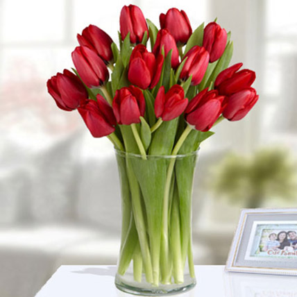 20 Red Tulip Arrangement: Christmas Flowers to Ras Al Khaimah