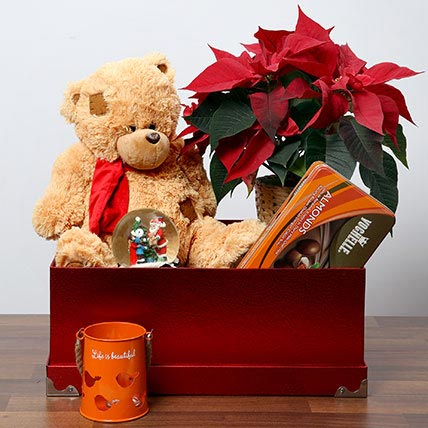 Soft Toy and Poinsettia Plant Combo: Christmas Gift Hampers