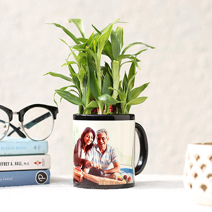 Lucky Bamboo In Personalised Black Mug: Personalised Gifts