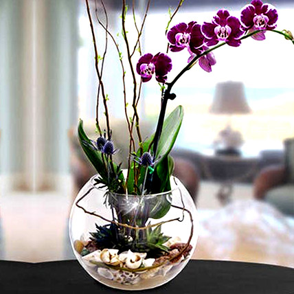 Artificial Real Touch Phalaenopsis: Home Decor Items