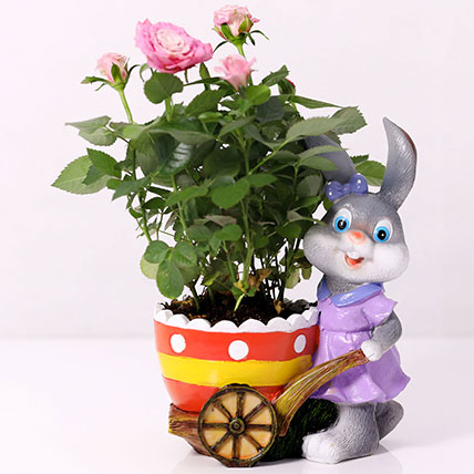 Pink Rose Plant In Rabbit Cart Pot: Plants for Anniversary