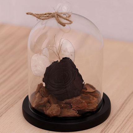 Black Forever Rose In Glass Dome: Forever Roses