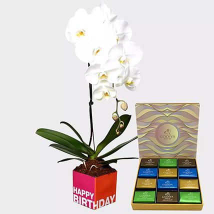 White Phalaenopsis Plant and Godiva Chocolates:  Godiva Chocolates