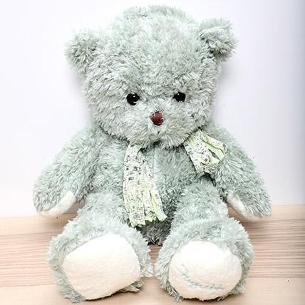Light Green Teddy Bear: Soft Toys