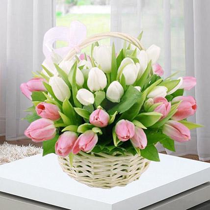 Pink White Tulips Basket: Tulip Flowers