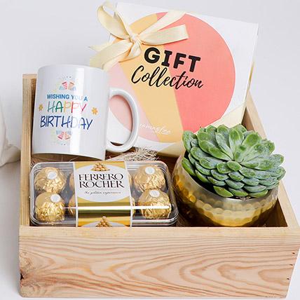 Succulent With Detox Tea & Chocolate Happy Birthday Gift: