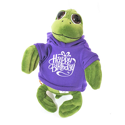 Cute Turtle In Birthday Hoodie: Soft Toys