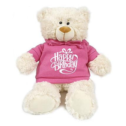 Fluffy Teddy Bear With Birthday Hoodie: Soft Toys
