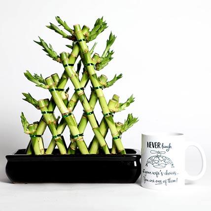 Triangle Shape Bamboo with Mug: Good Luck Plants
