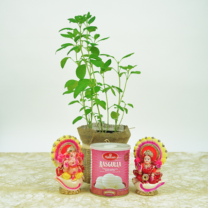 Diwali Gifts In Jute Wrapped Bag and Tulsi: Good Luck Plants