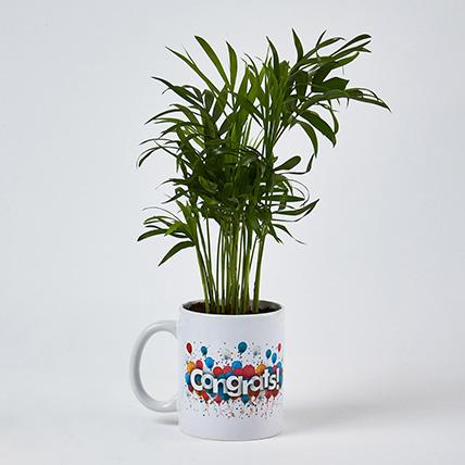 Chamaedorea Plant Congrats Mug:
