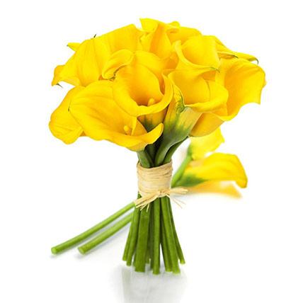 Classic Yellow Calla Lilies Bunch: