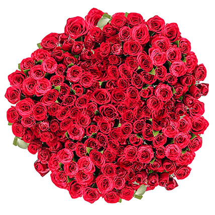 365 Red Rose Bouquet: Send Flowers To Pakistan