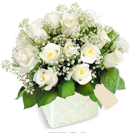 Pot Of White Roses: Send Gifts To Sri Lanka