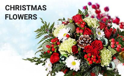 Christmas Flowers Decore