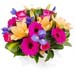 Arrangement of Bright Flowers