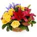 Bright Coloured Flower Basket