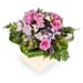 Fresh Pastel Flowers In Ceramic Pot