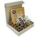King Of Kings Gift Box