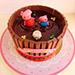 Joy Of Chocolate Cake 8 Portion