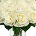 One Dozen White Roses